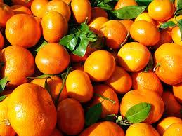Φρούτα της  Μακροζωίας, Τα Μανταρίνια