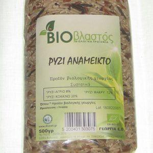 rizi-anameikto-bio
