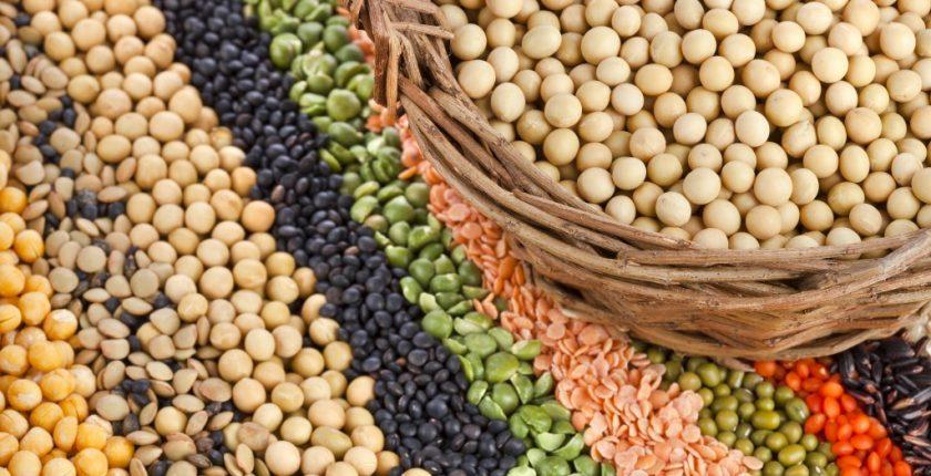 fytiki proteini, φυτική προτείνη, biologika proionta, βρώμη σπόρος, βιολογική βρώμη σπόρος, krithari bio sporos, bio προιοντα, e-shop βιολογικα προιοντα,αγορα βιολογικων προιοντων,βιολογικά, βιολογικά καταστήματα, βιολογικά προιόντα, βιολογικά προϊόντα, βιολογικά τρόφιμα, βιολογική καλλιέργεια, βιολογικα βιολογικα αυγα, βιολογικα καλλυντικα, βιολογικα καταστηματα online, βιολογικα μαγαζια, βιολογικα προιοντα βιολογικα προιοντα e shop, βιολογικα